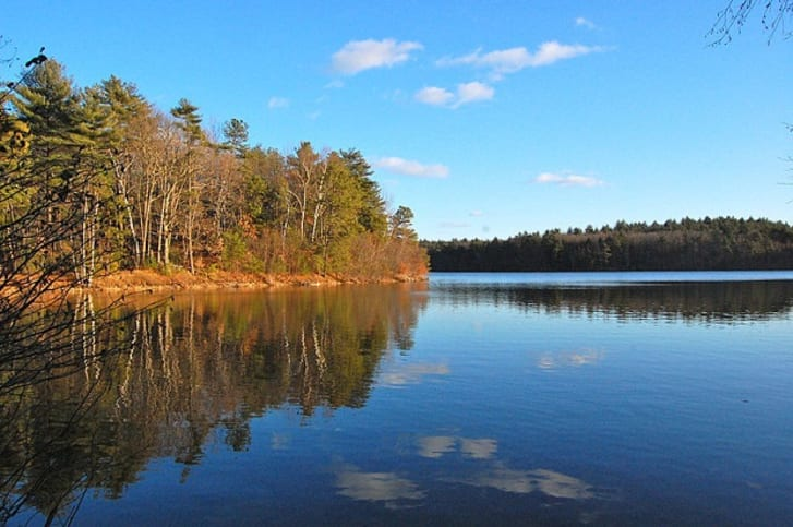A photo of Walden Pond
