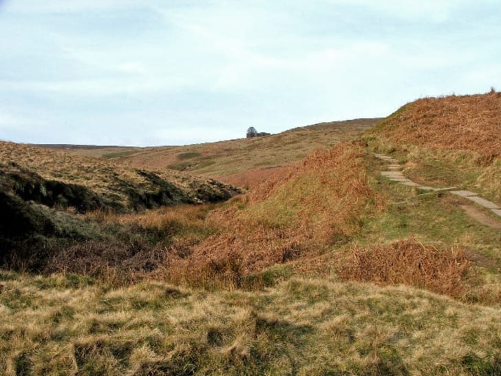 10 Things You May Not Know About 'Wuthering Heights' | Mental Floss
