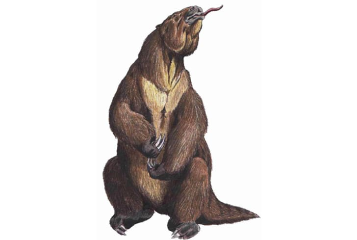 16 Cryptids That Might (Or Might Not) Exist | Mental Floss