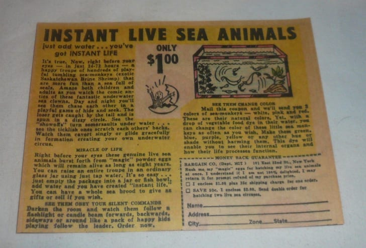 Sea-Monkey ad circa 1963.