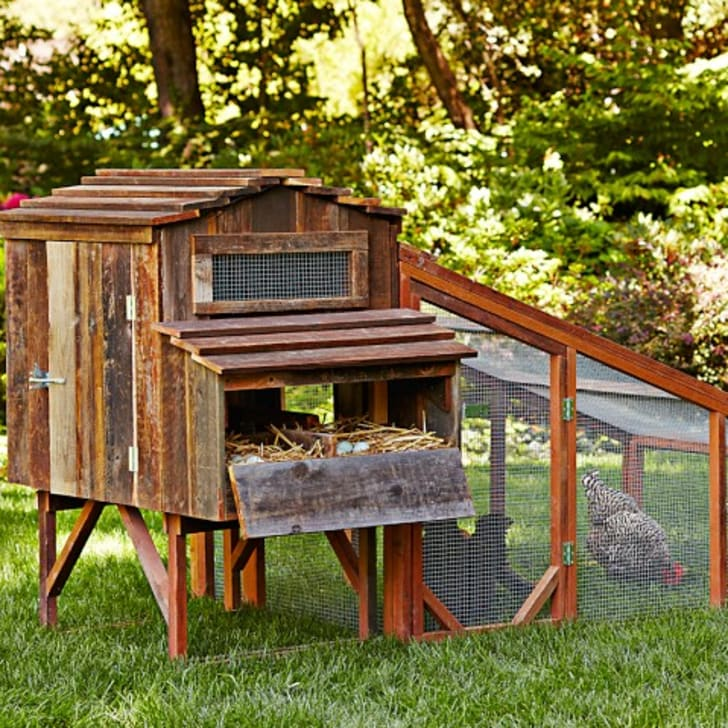 11 Snazzy Chicken Coops for Backyard Poultry Farmers ...