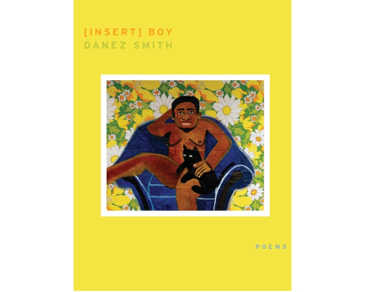 The cover of '[insert] Boy'
