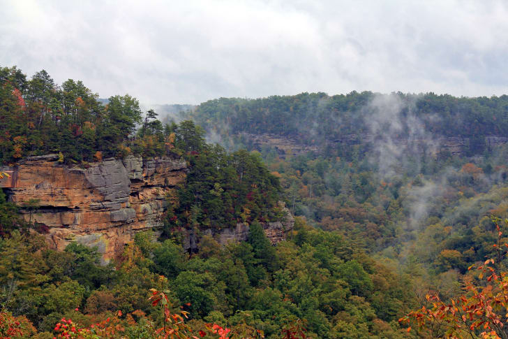 Swift Camp Creek Overlook in Red River Gorge