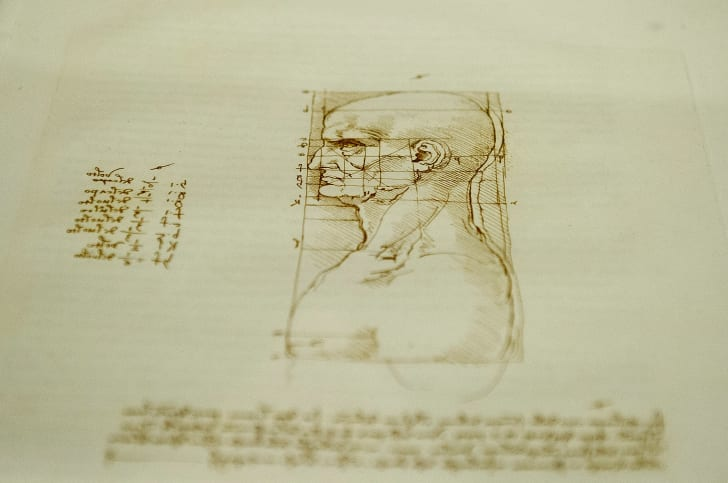 Another of Leonardo's sketches of a man's face.