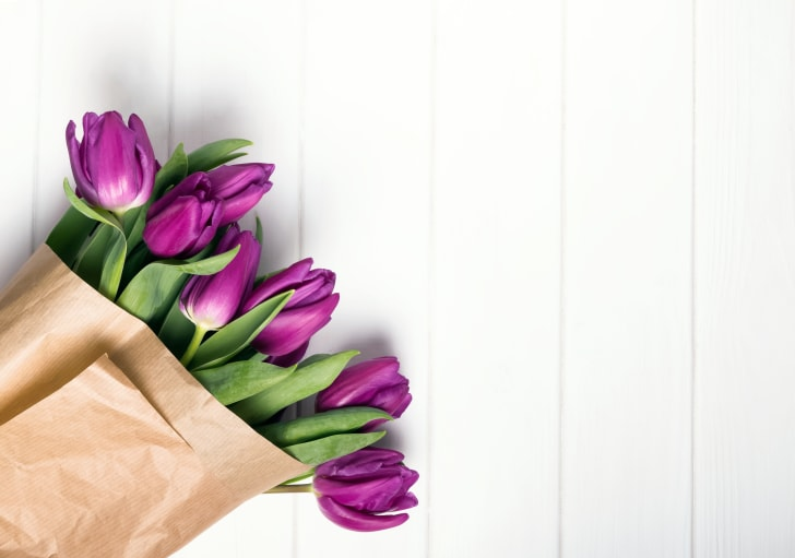 Purple flowers against a white wood background