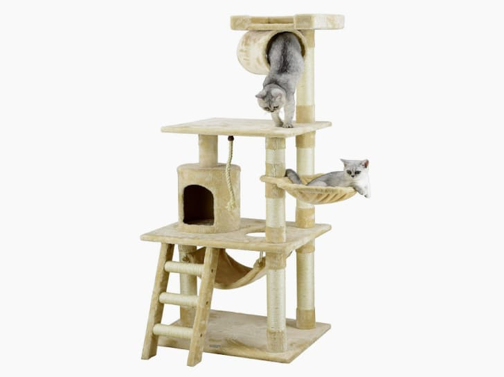 Cats play on a Go Pet Club cat tree