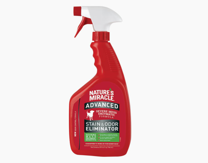 A red spray bottle of Nature's Miracle stain remover