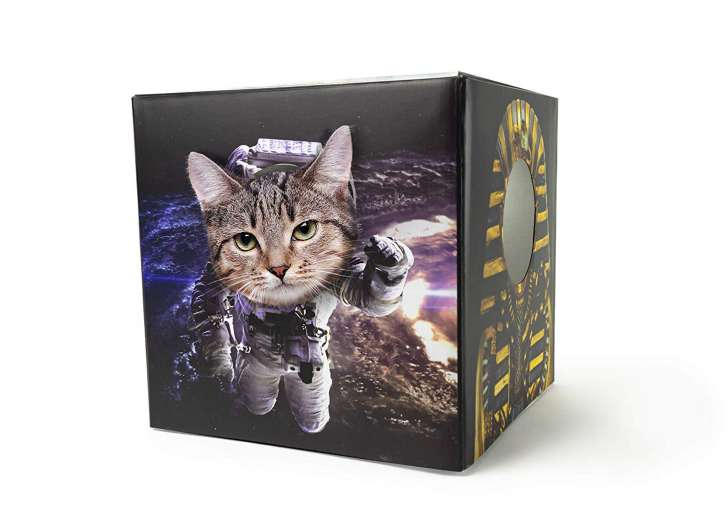 The best gag gift to buy on Amazon for a cat lover.
