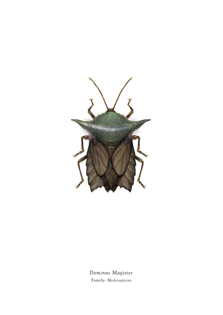 Yoda insect.