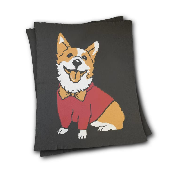 blanket with an image of a dog wearing a bow tie and sweater