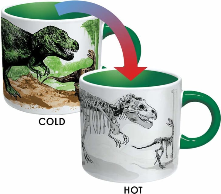 Image of a mug decorated with dinosaurs. When cold, the dinosaurs are colored in green and brown. When the mug is warm, the color goes away and the dinosaurs' skeletons are visible.