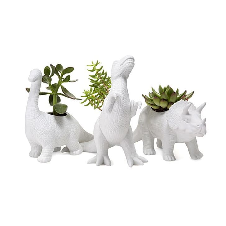 Image of three white porcelain dinosaur statues with succulents sticking out of the holes in their backs.