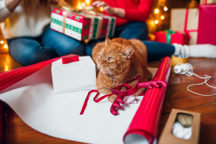 An orange cat sitting on wrapping paper as a person wraps presents in the background.