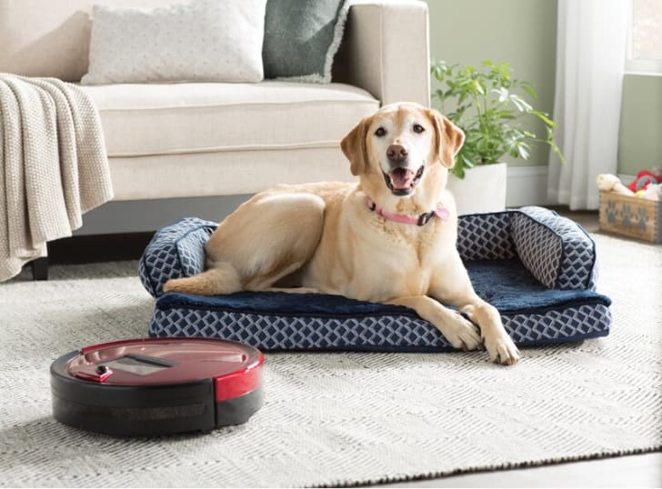 A bObsweep vacuum that's available ay Wayfair.