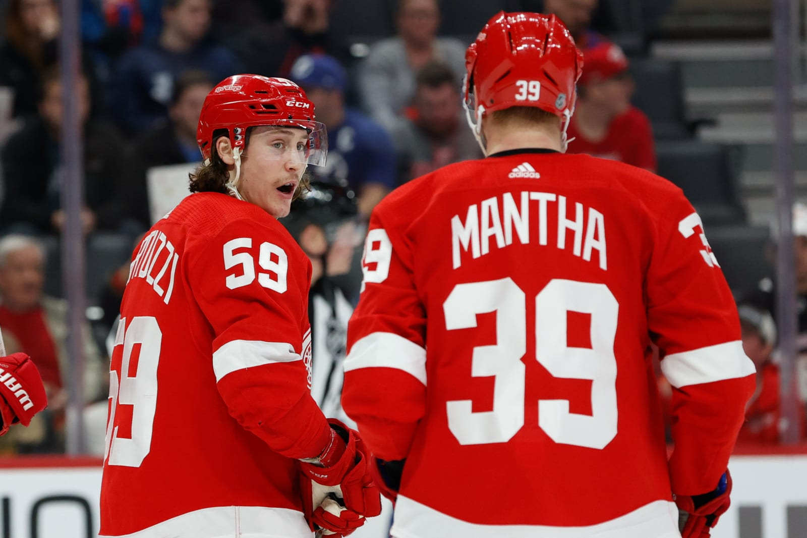 Detroit Red Wings, Anthony Mantha
