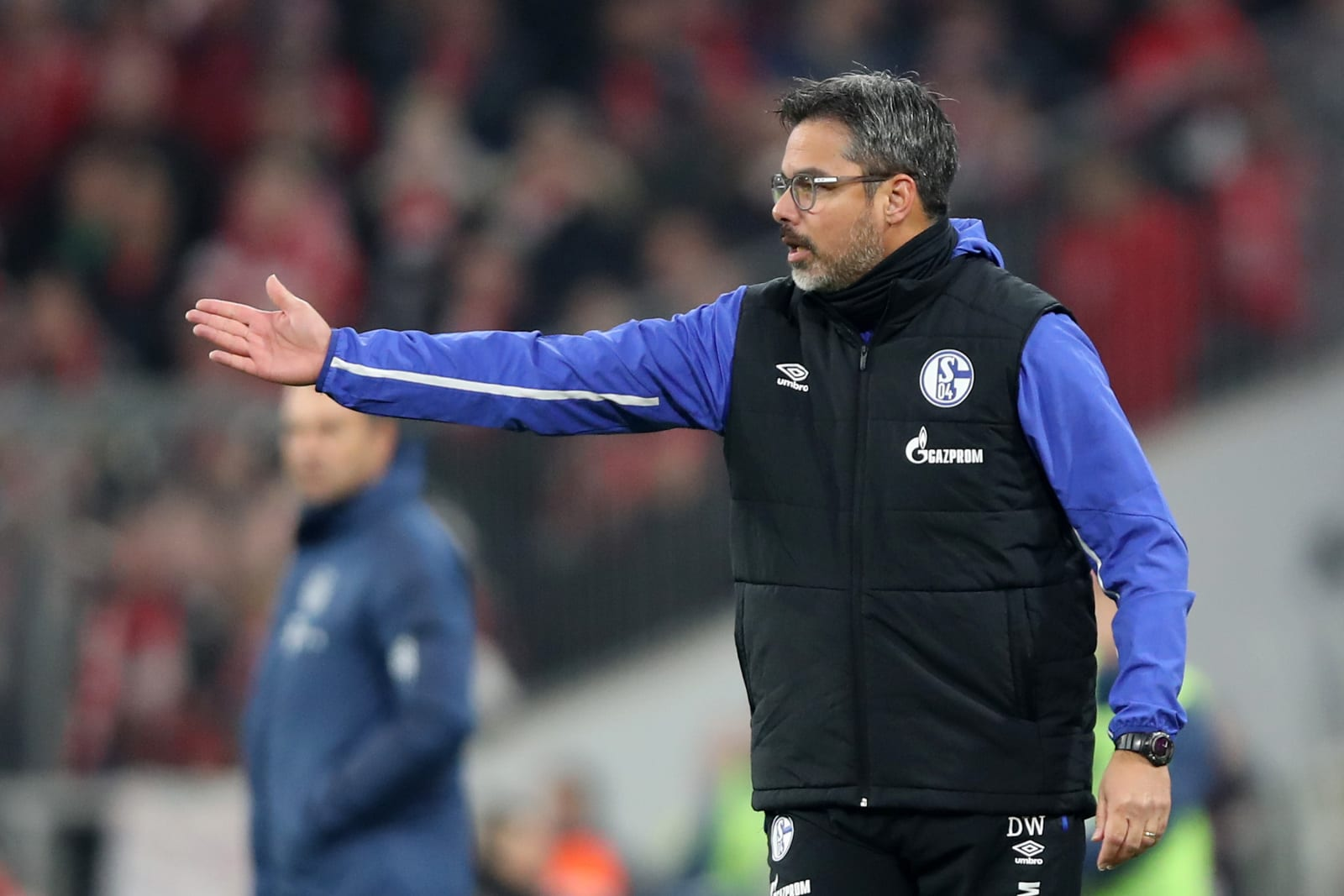 FC Schalke, David Wagner