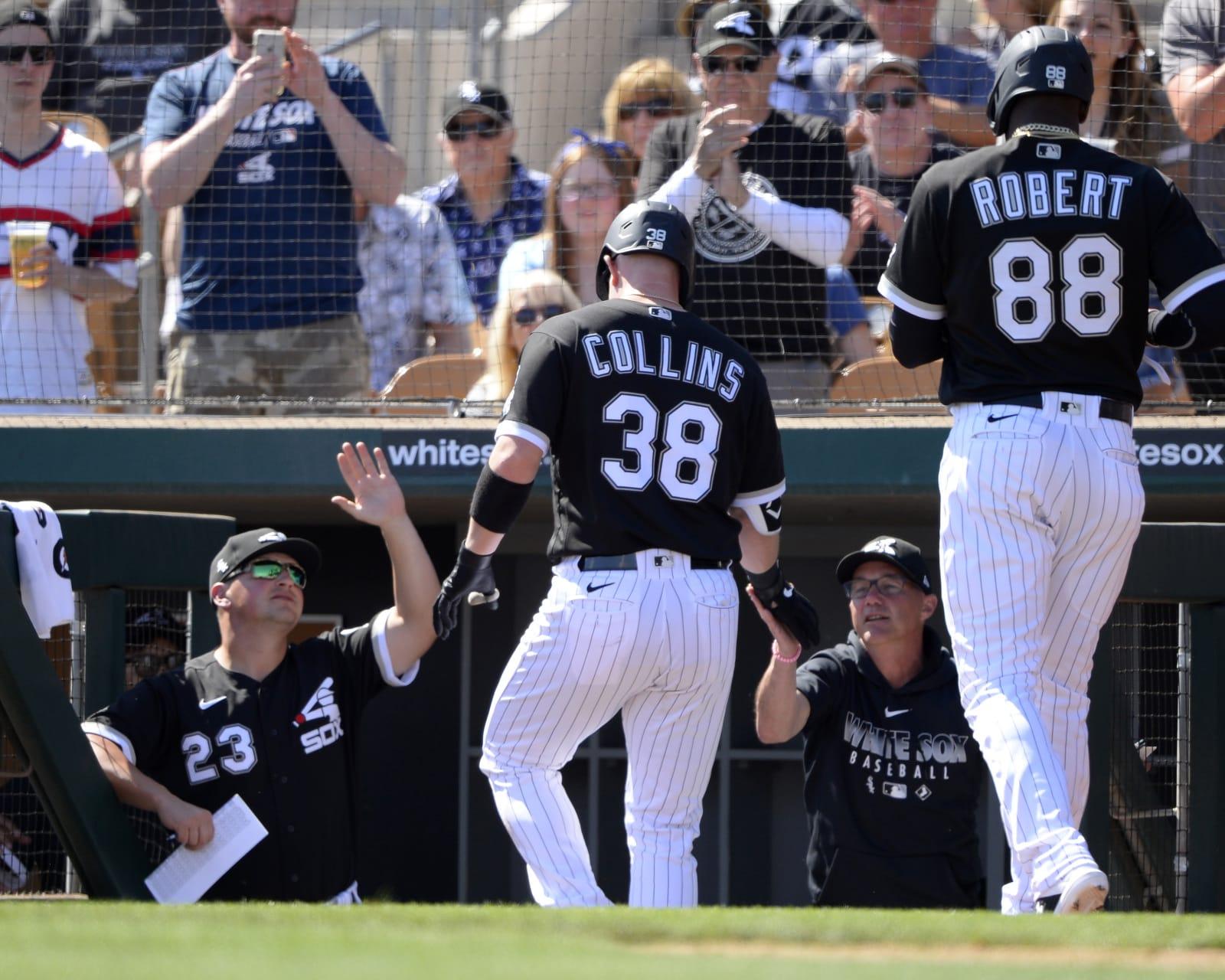 Chicago White Sox Zack Collins