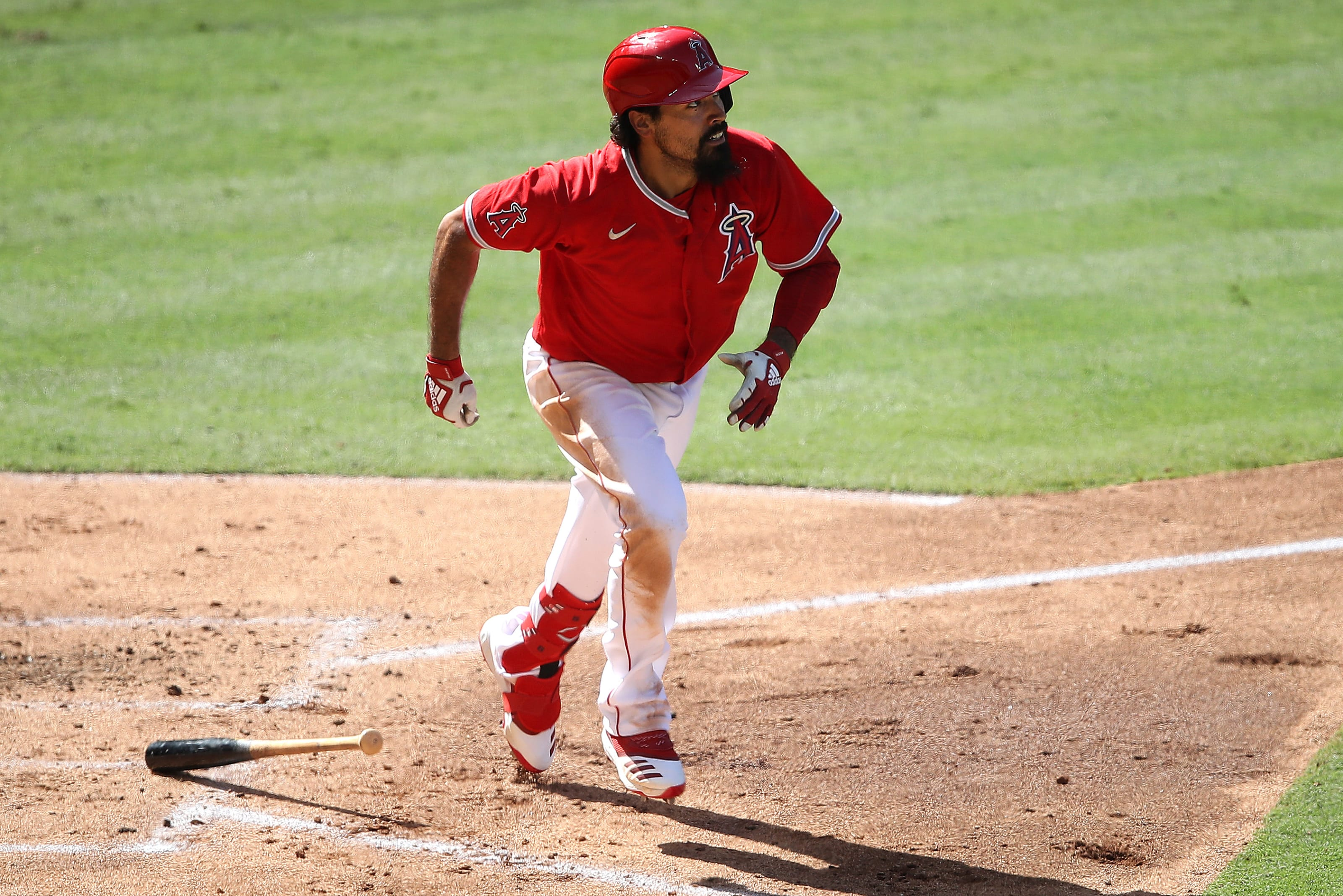 Angels, Anthony Rendon