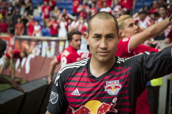 New York Red Bulls, Luis Robles