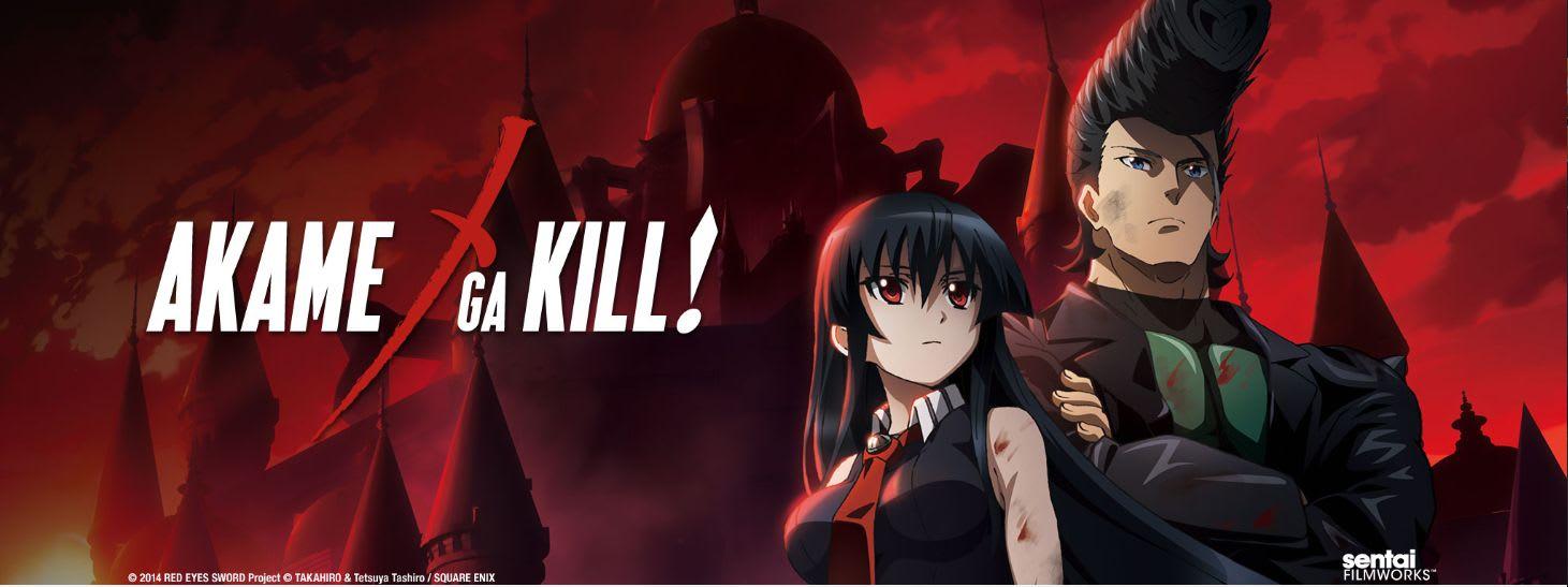 <em>Akame ga Kill</em> anime poster via Sentai Filmworks.