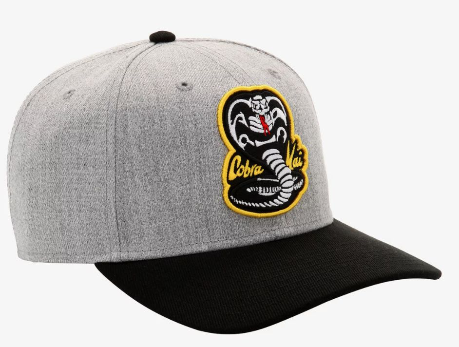 Discover the 'Cobra Kai' logo snapback hat at Hot Topic.
