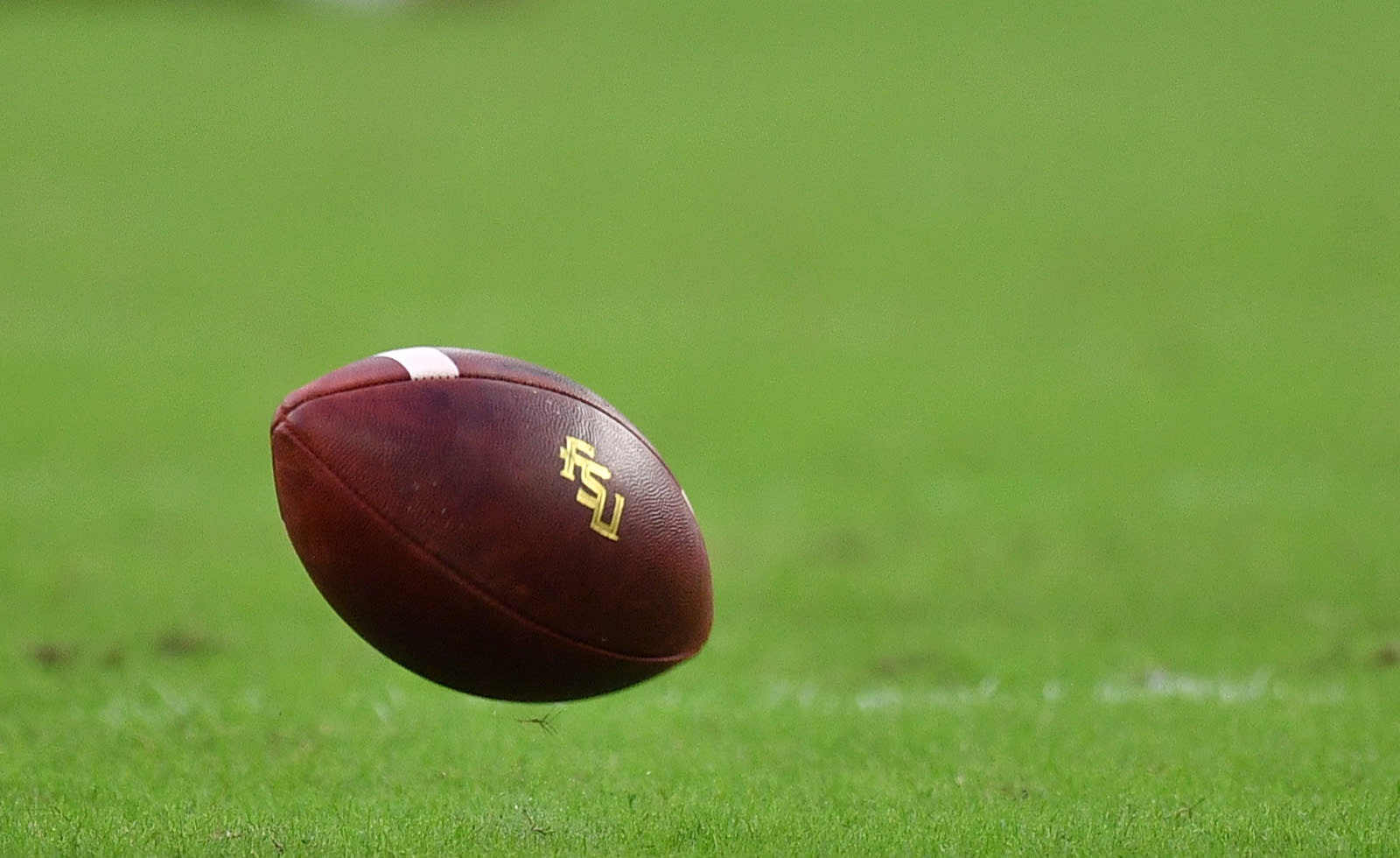 FSU football: 3 things to lookout for against North CarolinaNorth Carolina Football