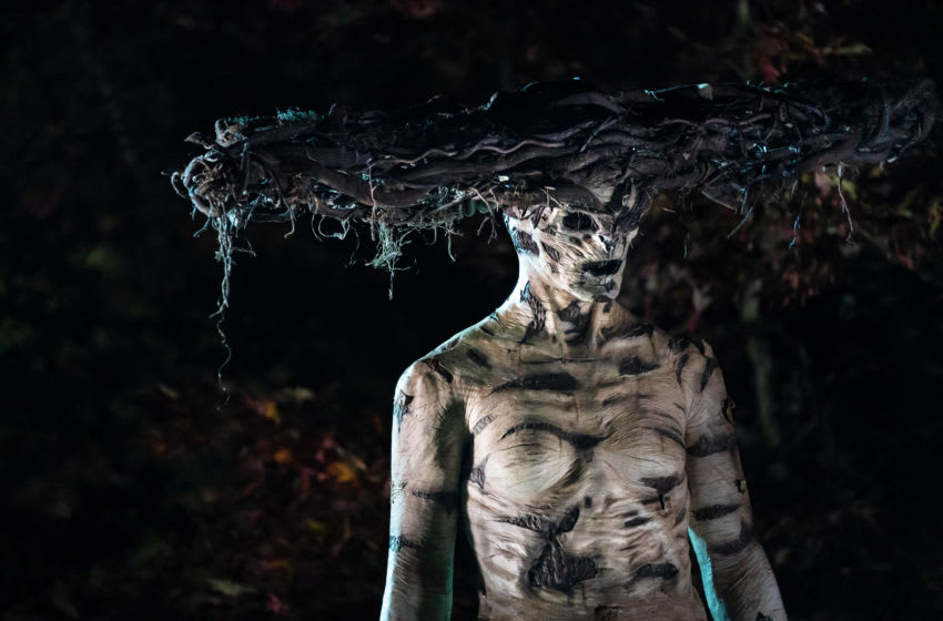 A dialogue on inclusion, horror and more with The Birch writer Casey Modderno
