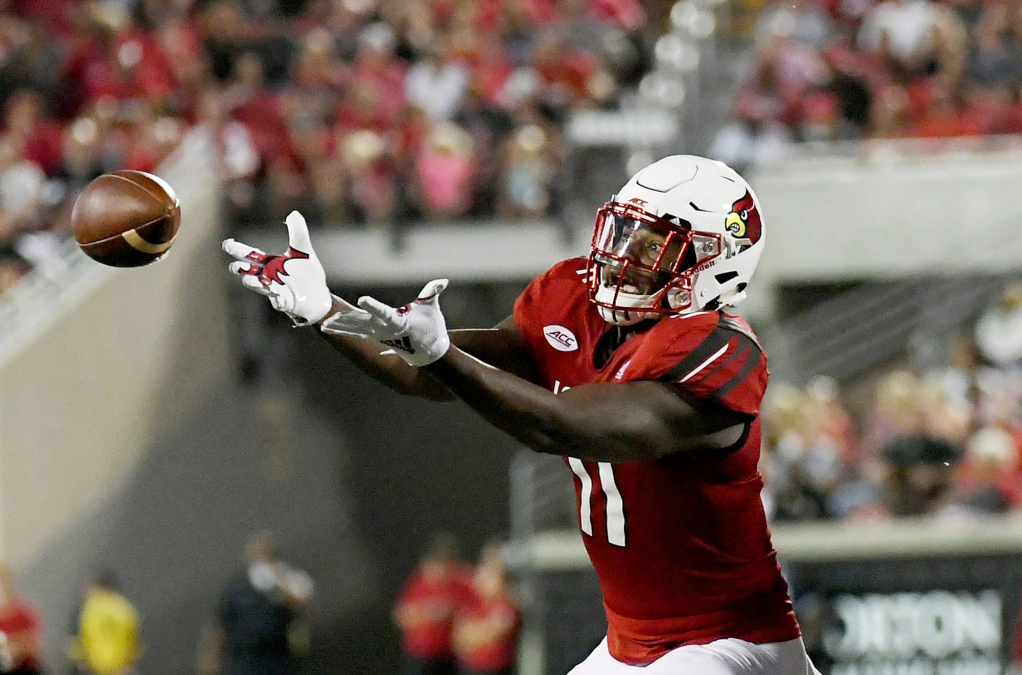 Louisville football dipping back into the transfer portal ...