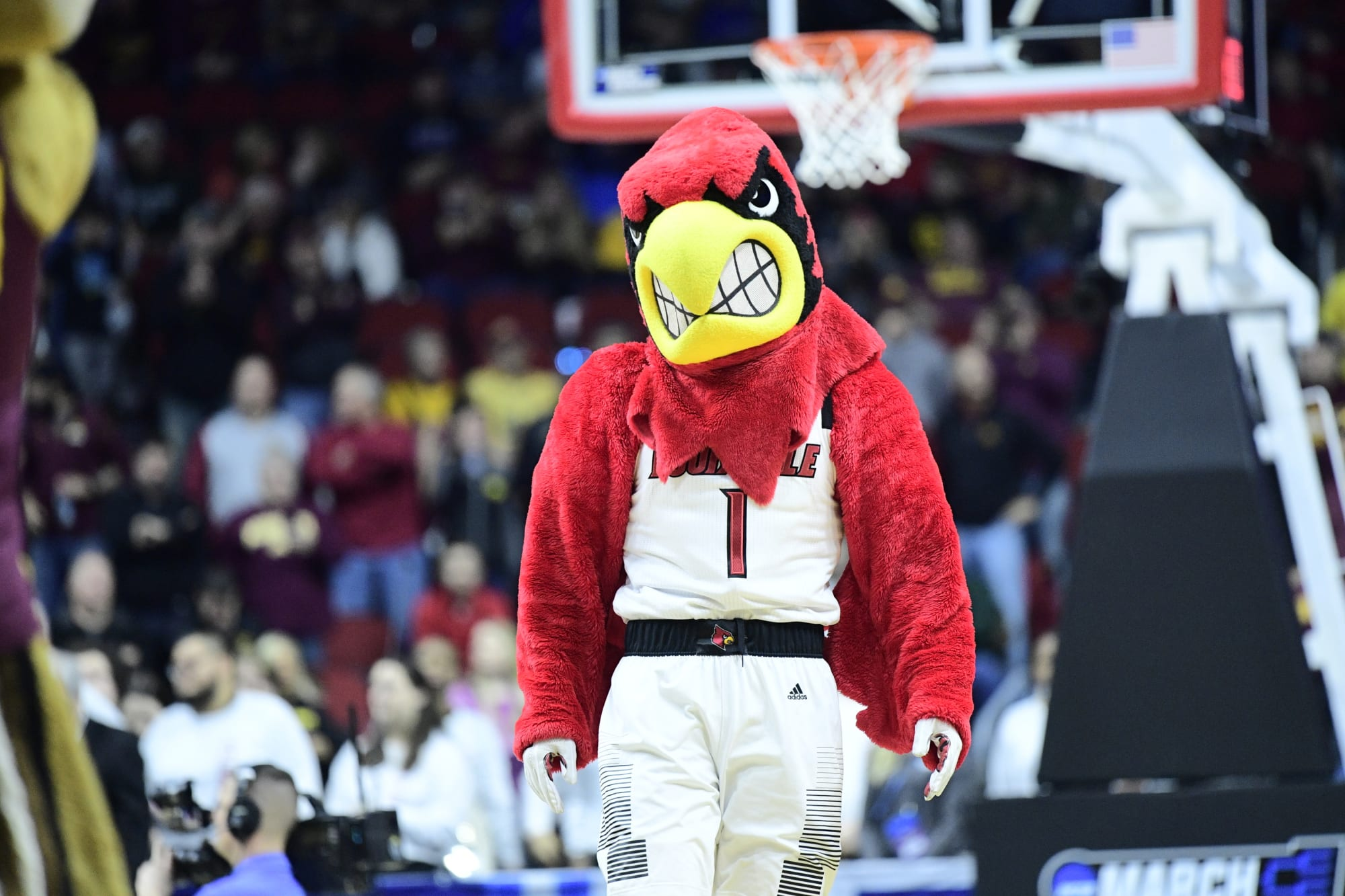 Rivalry NCAA Kentucky Wildcats Cooler Bag
