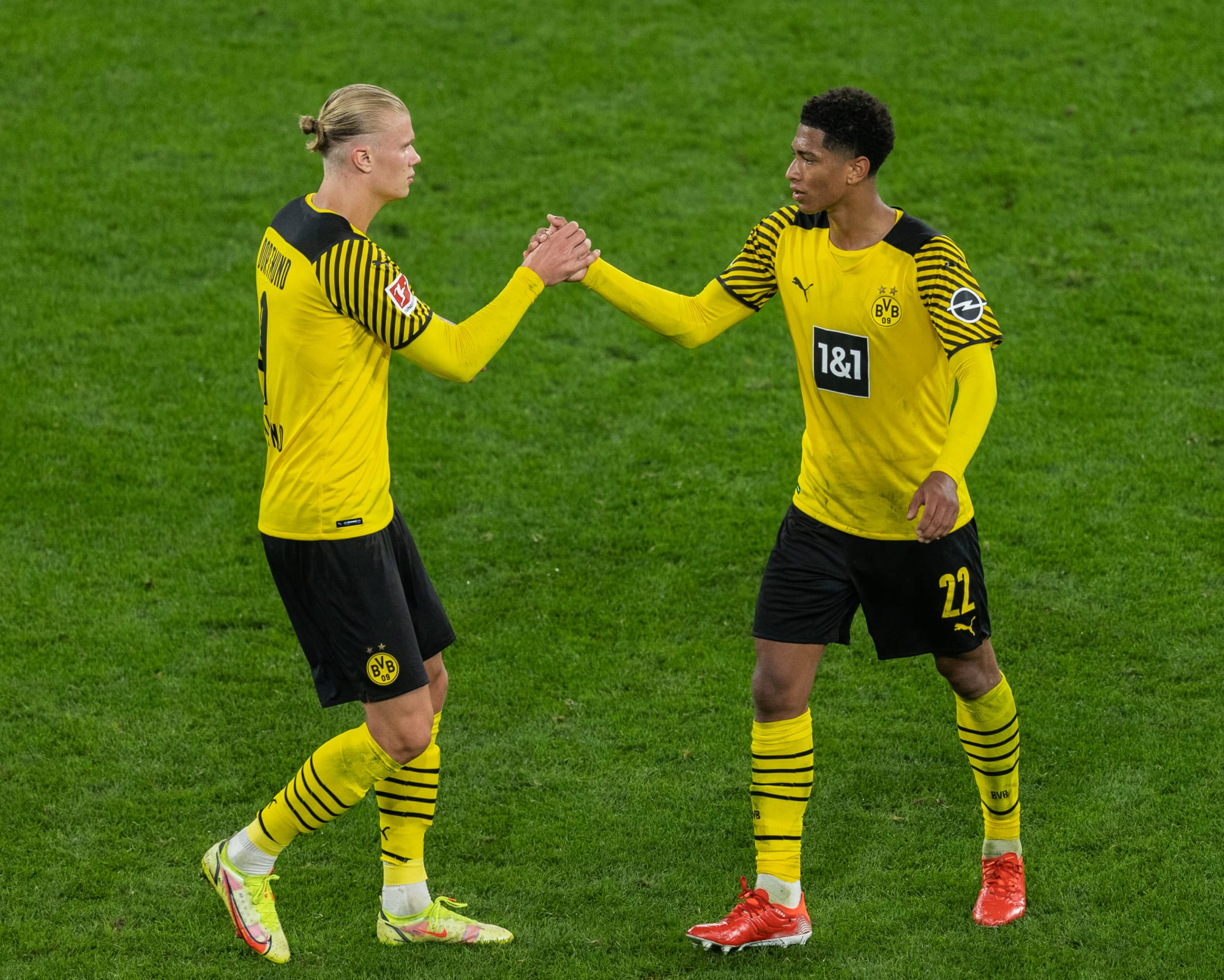 Watch Bayer Leverkusen vs Borussia Dortmund: Live stream, TV info