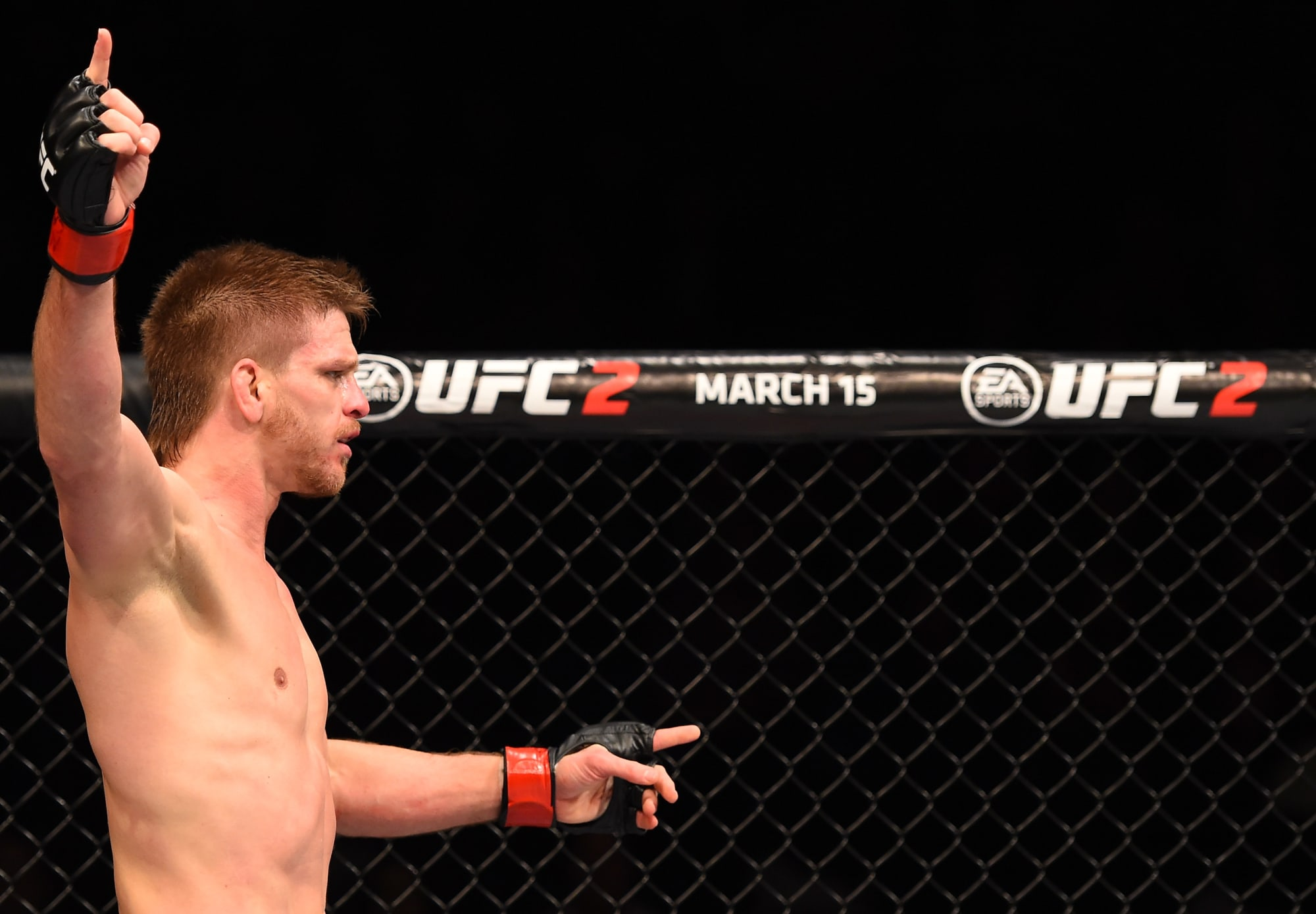 How to bet on ufc fights in vegas wagershack mobile betting