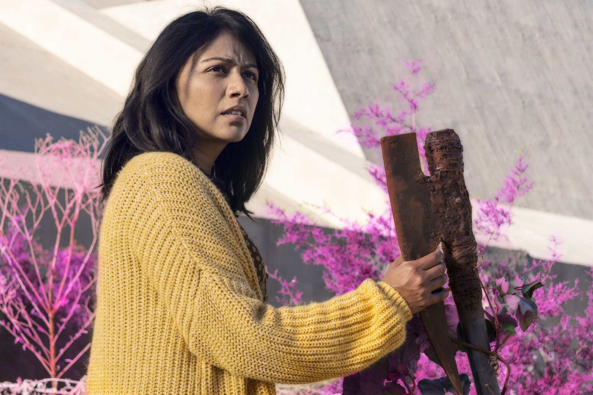 53 thoughts I had watching Fear The Walking Dead season 6 episode 12, In Dreams