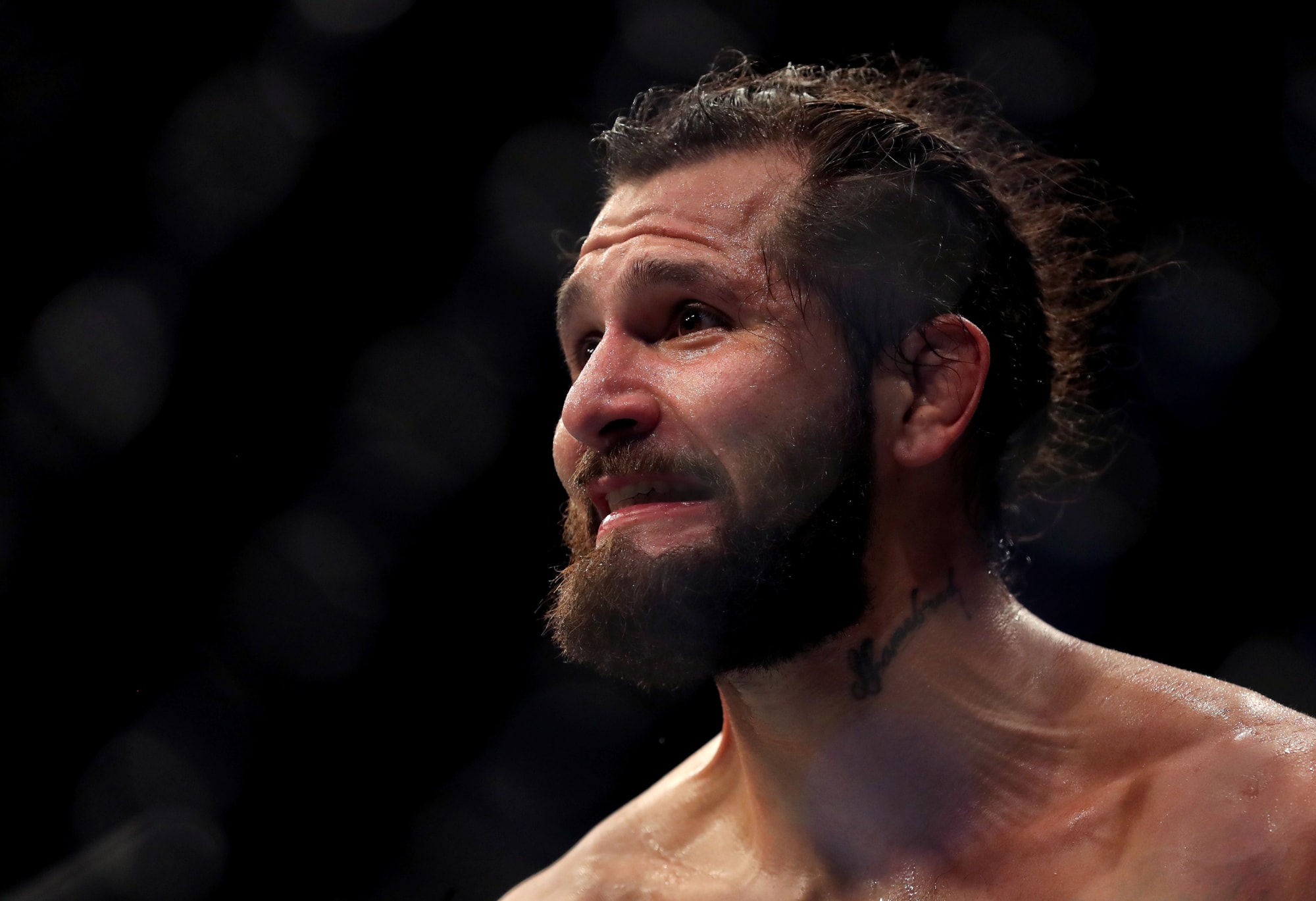 FanSided MMA cover image