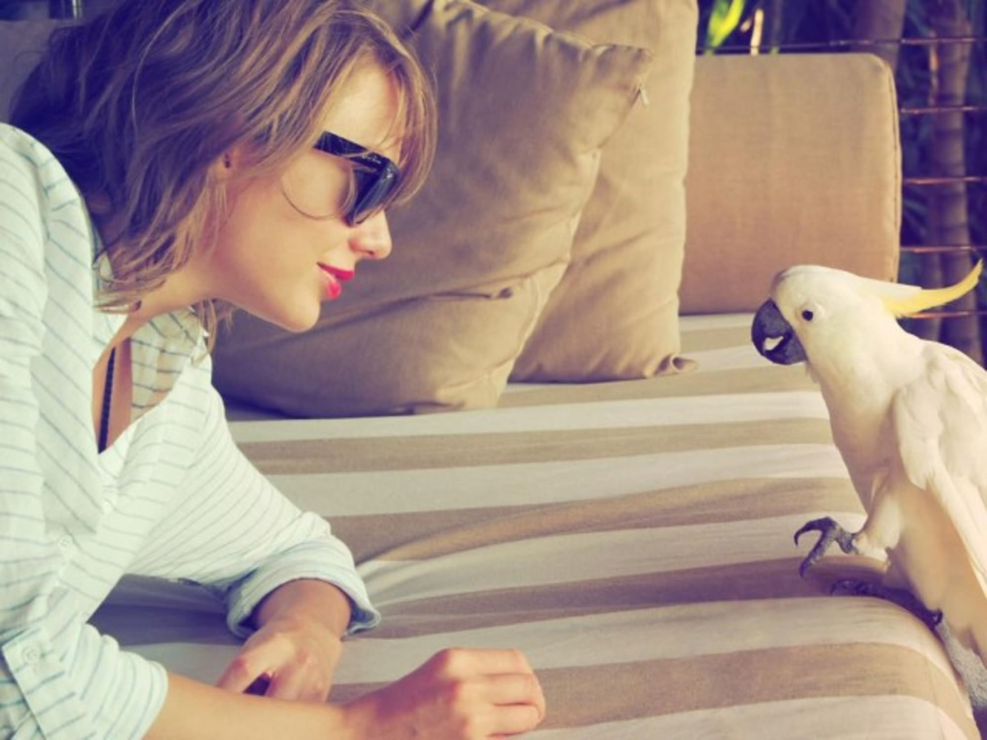 Taylor Swift S 10 Best Instagram Photos From The 1989 Era