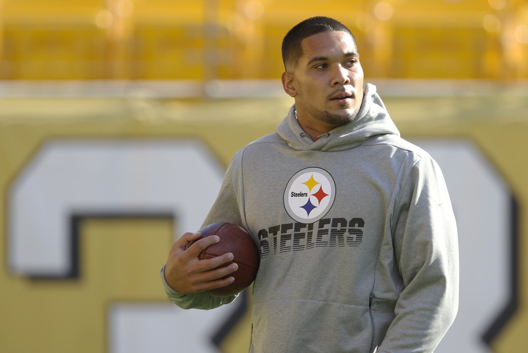 Signing of James Conner is lukewarm at best