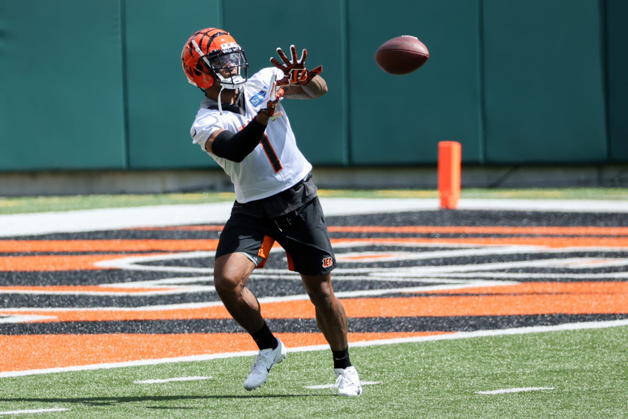 Cincinnati Bengals: Ja'Marr Chase receives high praise from Mike Green