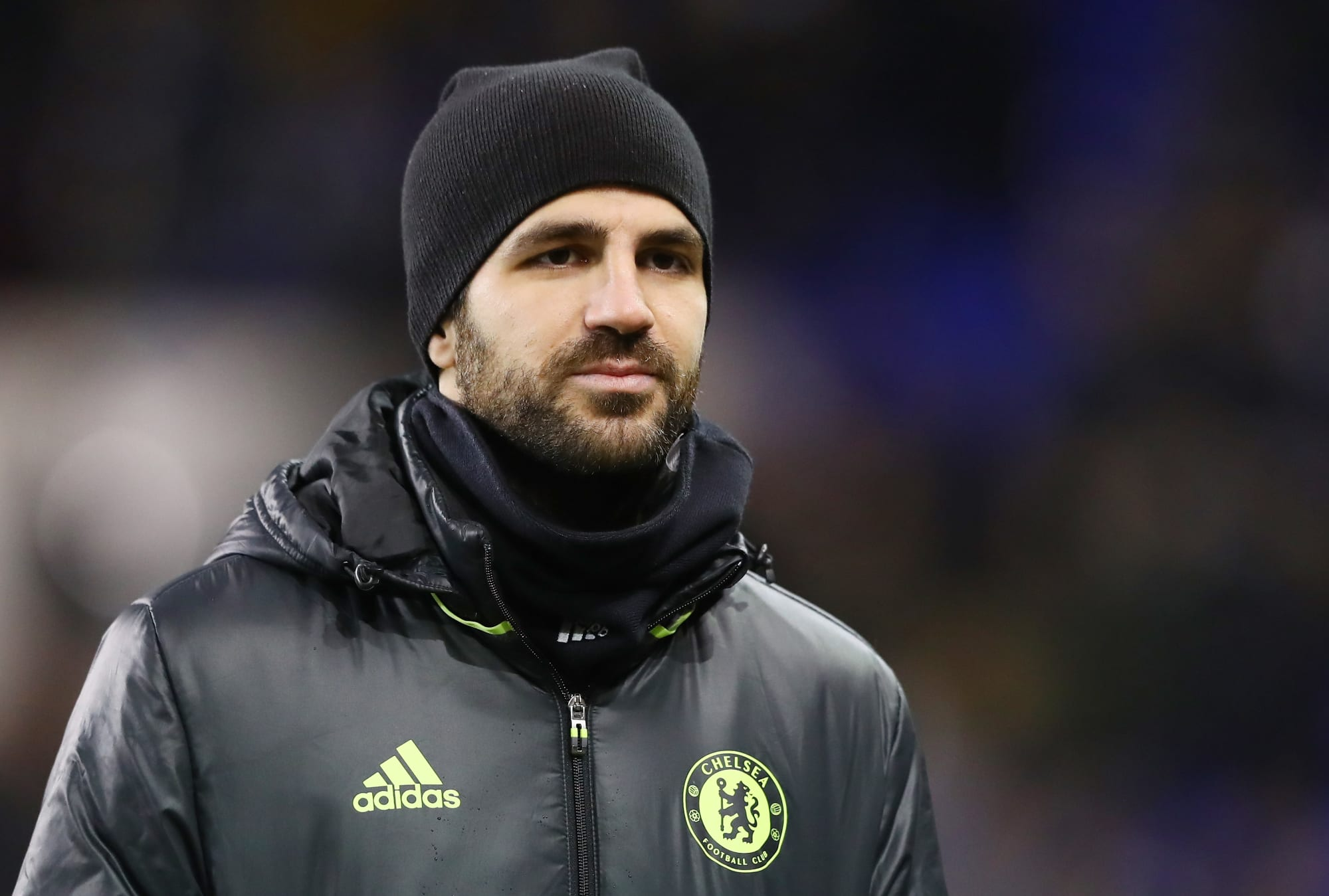 Chelsea: Cesc Fabregas Has Deserved More Midfield Starts