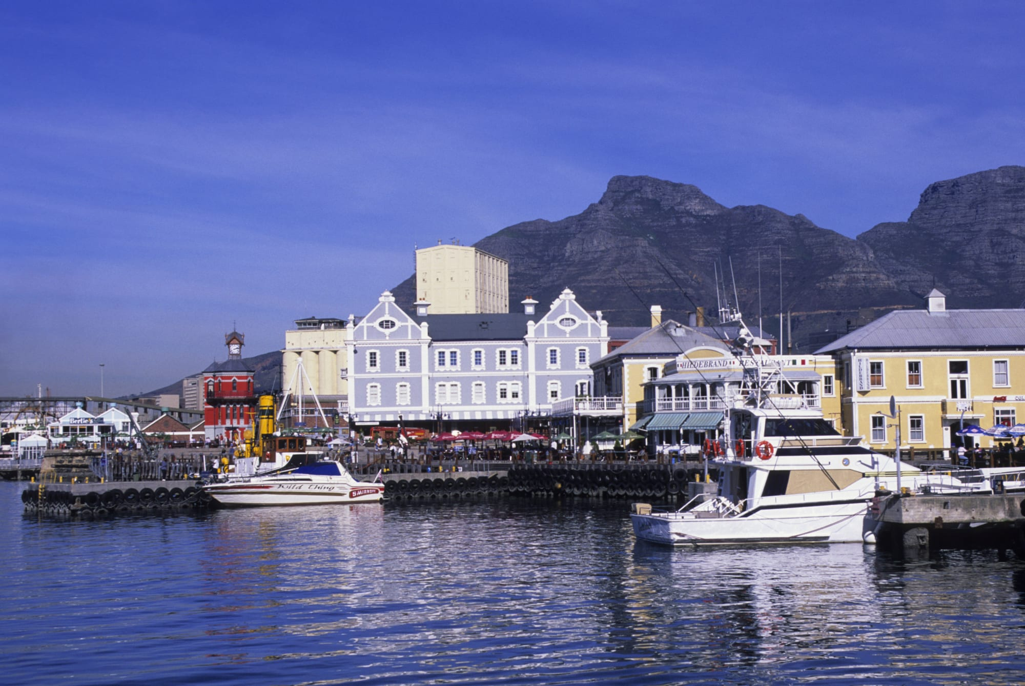 5 things you absolutely have to do in Cape Town, South Africa