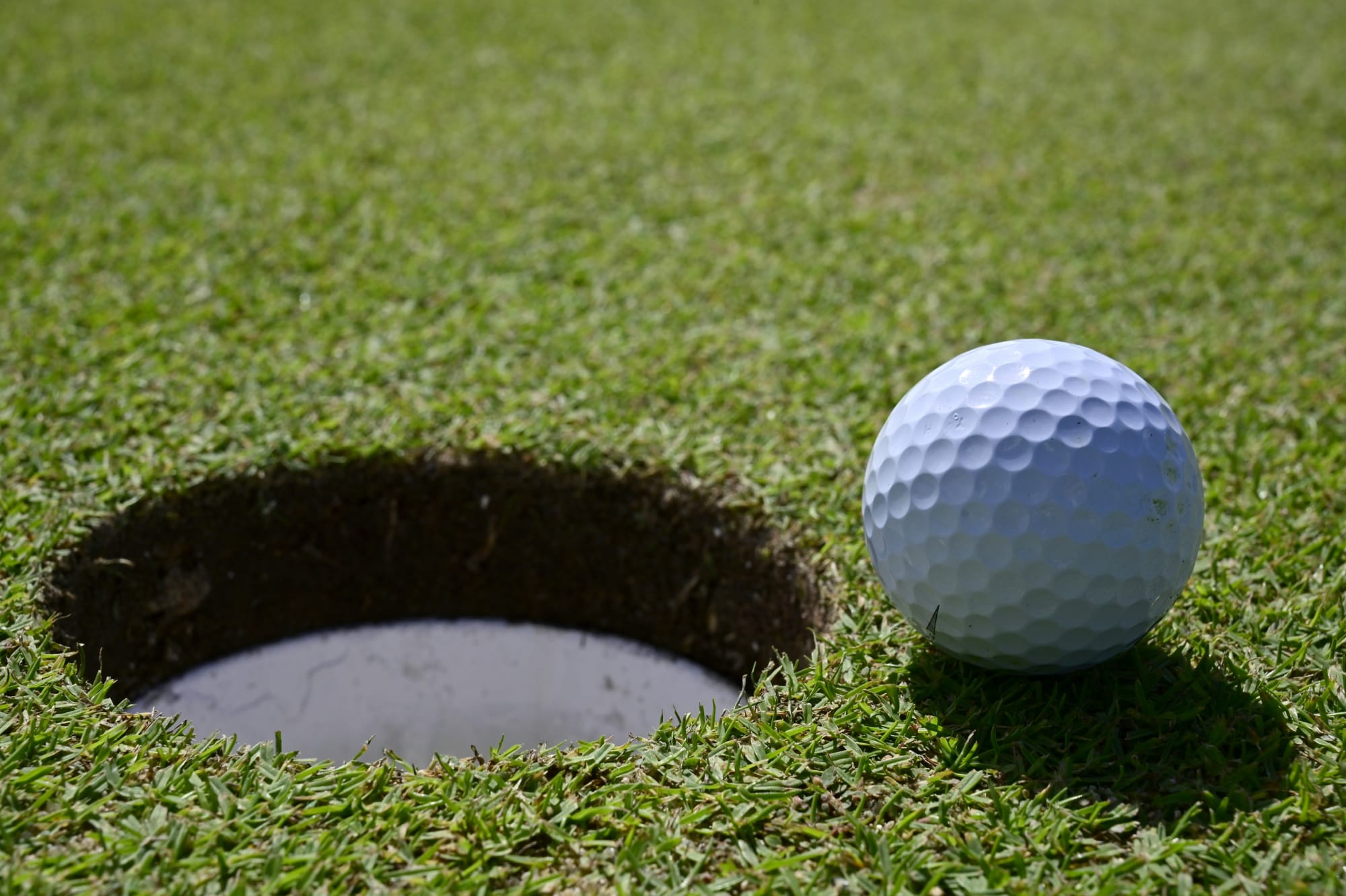 Arizona Athletics clinches Territorial Cup Series with Men's Golf victory