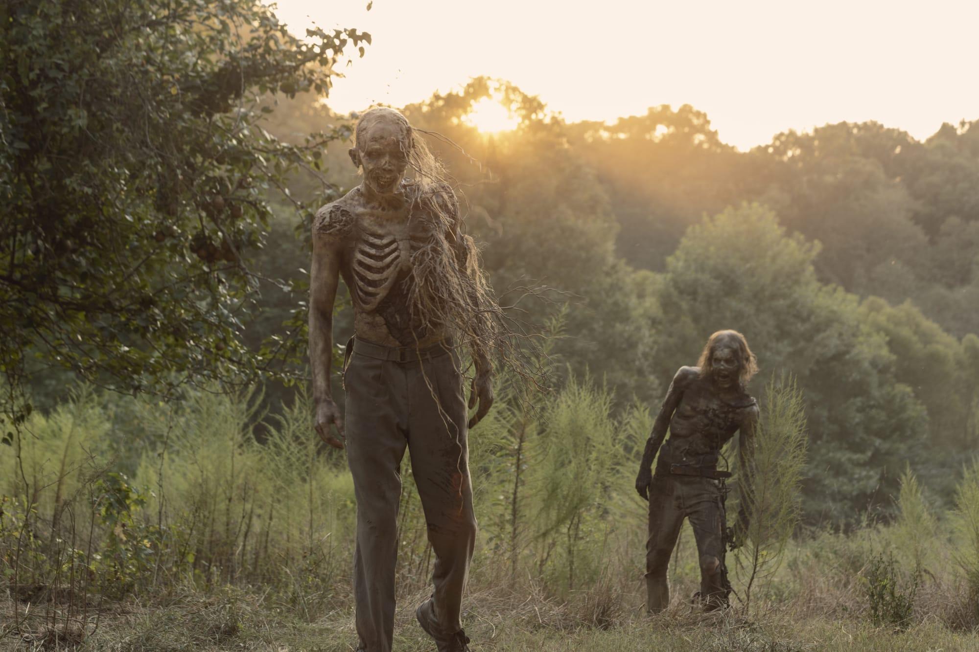 The Walking Dead Stream Movie2k