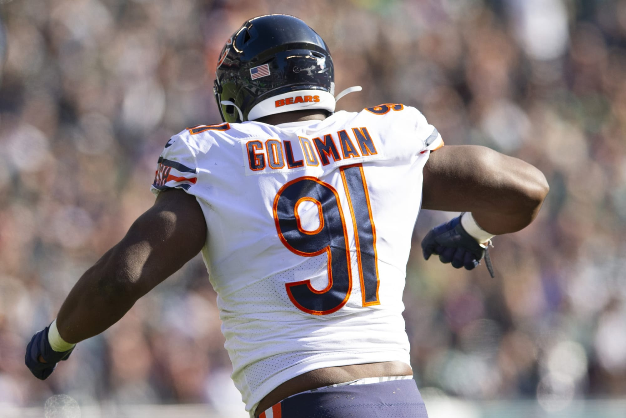 Chicago Bears: Who will replace Eddie Goldman in 2020?