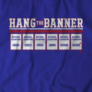 Hang The Banner T-Shirt by BreakingT