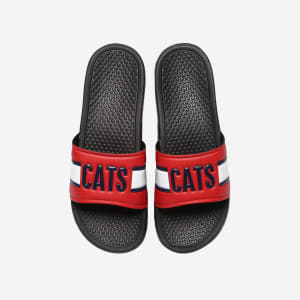 Arizona Wildcats Raised Wordmark Slide
