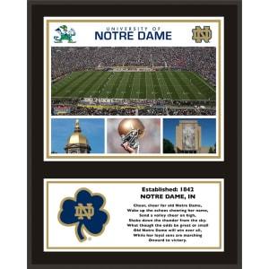 """Notre Dame Fighting Irish Fanatics Authentic 12"""" x 15"""" Sublimated Team Plaque"""