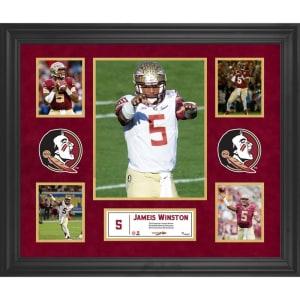 Jameis Winston Florida State Seminoles Fanatics Authentic Framed 23'' x 27'' 5-Photo Collage