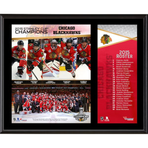 Chicago Blackhawks Fanatics Authentic 2015 Stanley Cup Champions 12'' x 15'' Sublimated Plaque