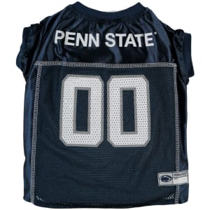 Download Two Penn State football players selected in first round of ...