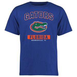 Florida Gators Big & Tall Campus Icon T-Shirt - Blue
