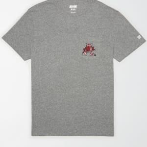 Tailgate Men's Arkansas Razorbacks Pocket T-Shirt Gray Heather M