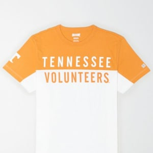 Tailgate Men's Tennessee Volunteers Colorblock T-Shirt White L